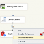 How to use SSIS Data Viewer in DataFlow Task