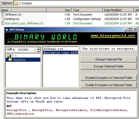 Binaryworld - Taking advantage of EFS (Encrypted File System) APIs