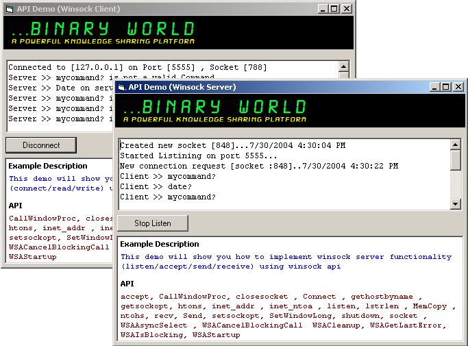 Binaryworld - Windows Socket Programming tutorial : Part-1